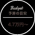 予算の目安:3万円〜